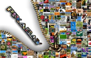 Skąd pobrać darmowe zdjęcia na stronę www?